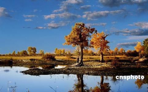 兰州·夏河·拉卜楞寺·桑科草原·祁连卓尔山·张掖丹霞·嘉峪关·梦幻敦煌·青海湖·刚察·茶卡盐湖8日游(兰州往返)