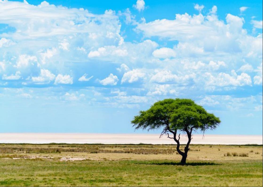 【纳就是爱】——纳米比亚沙漠交响曲12天